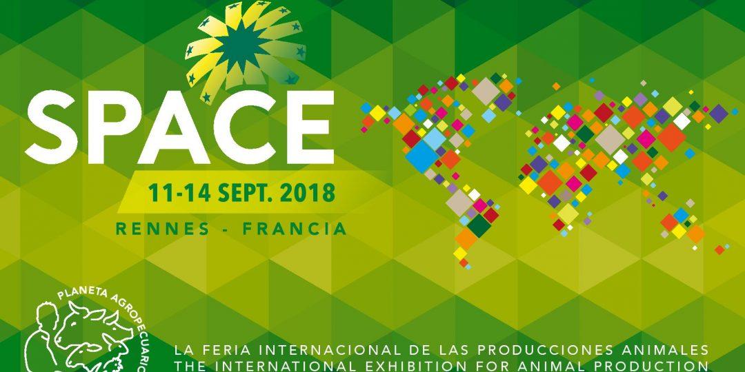 Feria SPACE