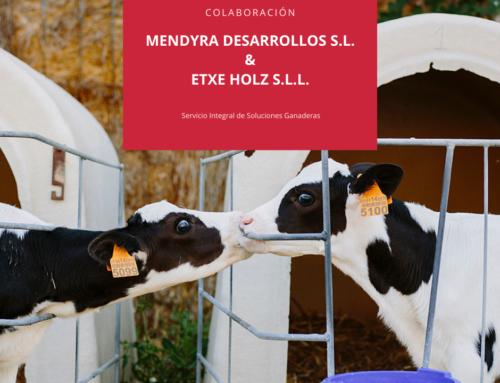 Colaboración entre Mendyra y Etxe Holz con el fin poder ofrecer un servicio integral de soluciones ganaderas