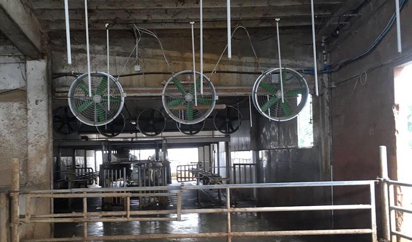 Ventiladores para granjas para salas de espera
